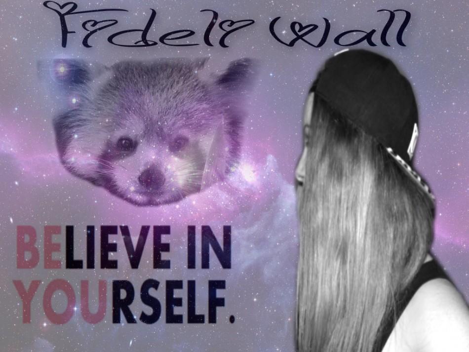 fideliwall